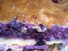 Tarte-myrtilles-photo20